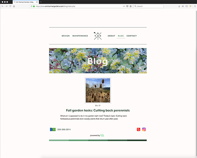 How to Create a Body Border Around a Page's Content